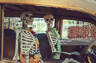 Northern Territory Trip-skeleton-jpg