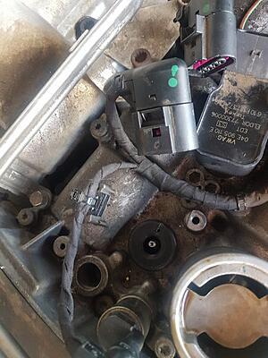 Removing coil packs-20210608_141437-jpg
