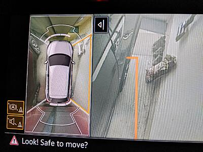 Tiguan Reverse Camera looks Off Angle - is this the same for others ?-pxl_20210120_064145925-copy-jpg